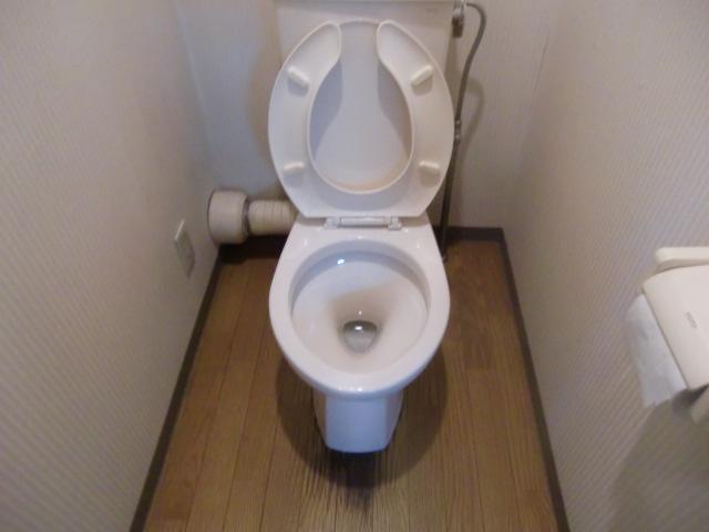 トイレ掃除の一例