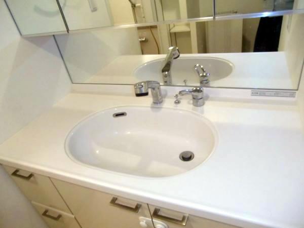 洗面台(照明器具、洗面ボール、収納回り、物入れ)