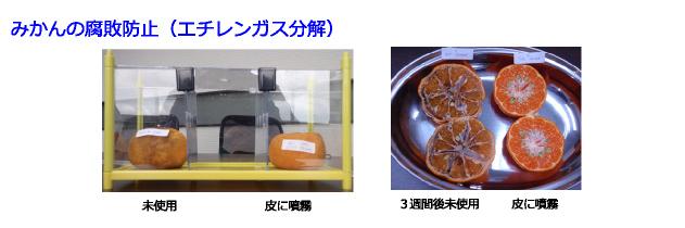 NanoZone Solutionの施工効果実例