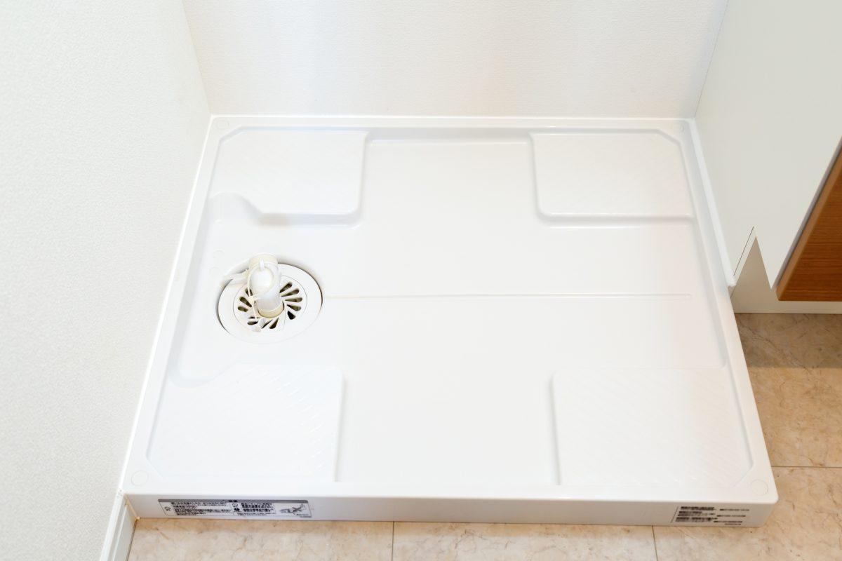 洗濯機排水溝掃除